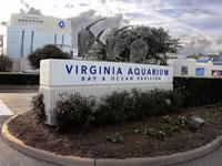 Localities-Municipalities-VA-Aquarium_200-150